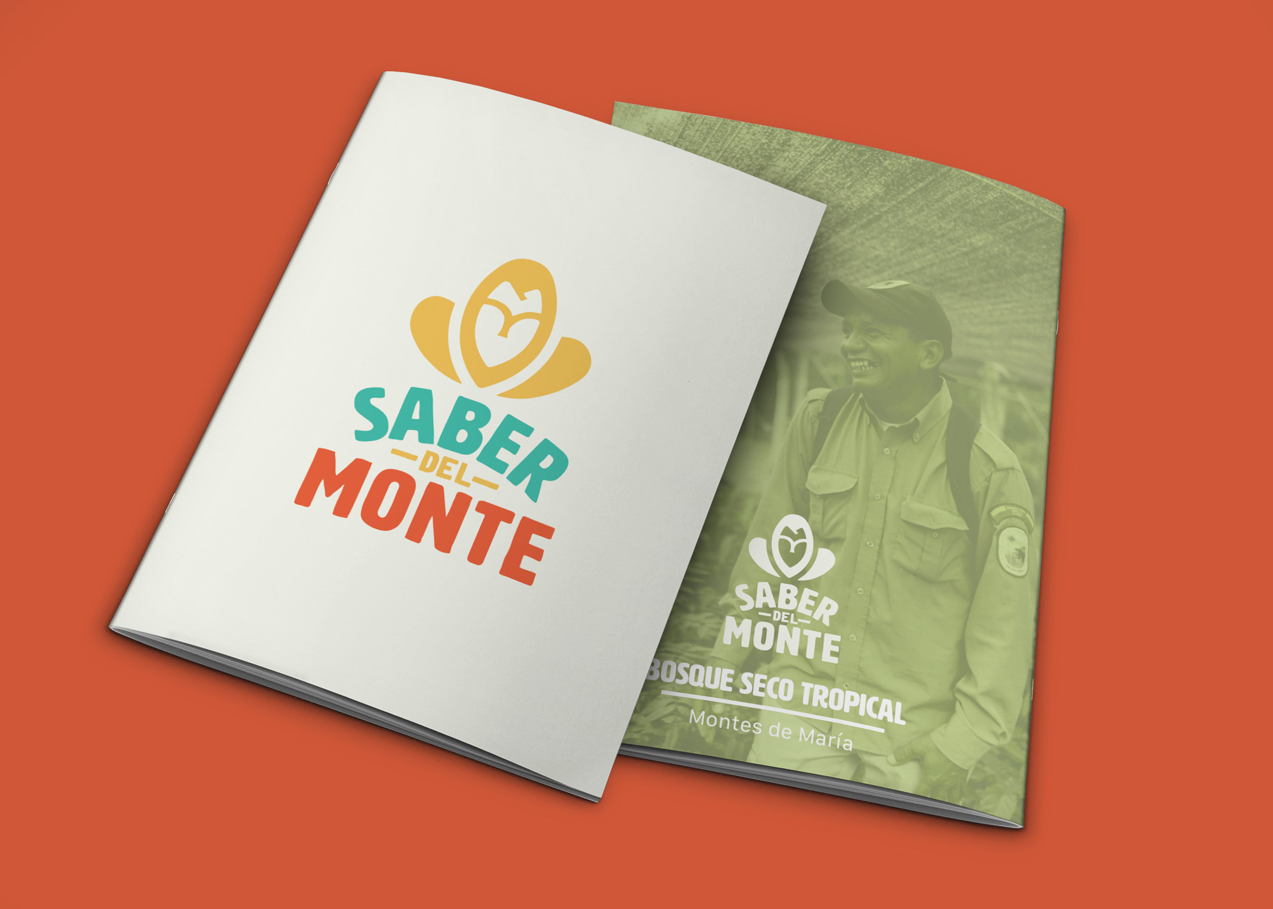 brochure cover mock up.jpg