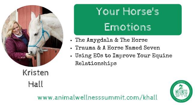 2018 Animal Wellness Summit - You can access the Summit here (requires subscription).