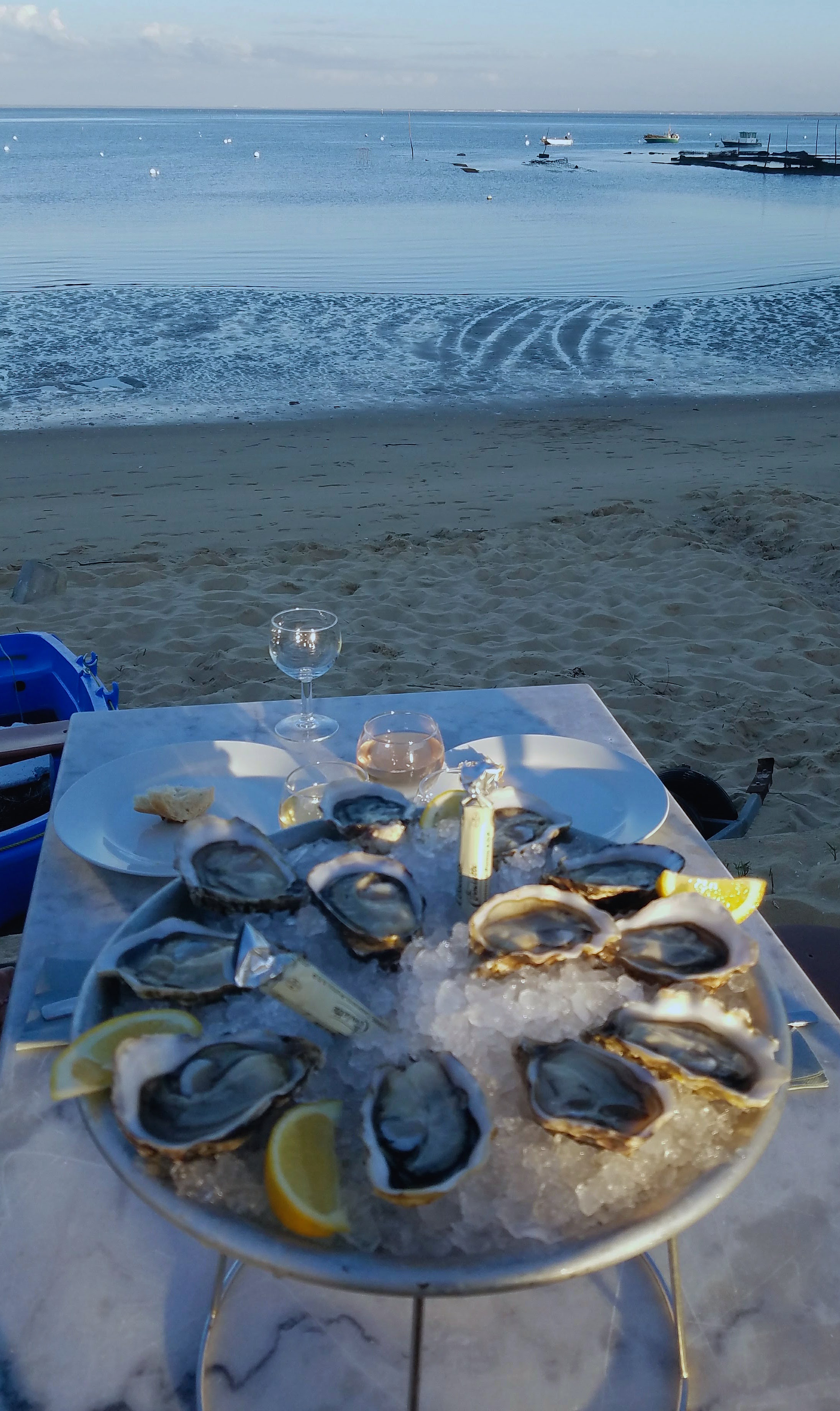 The oysters boyfriend ordered! Even a vegetarian can appreciate how fresh and local these are.