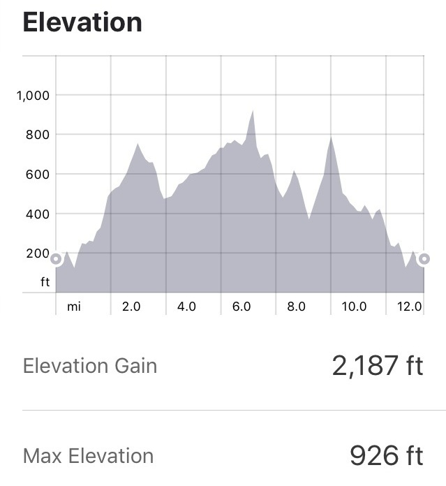 Some pretty steep, intimidating sections here. Click through for  full Strava details.