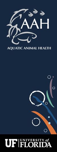 University of Florida Aquatic Animal Health
