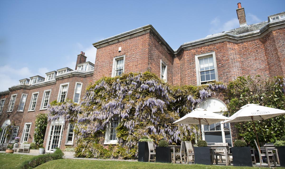Pelham wisteria web.jpg