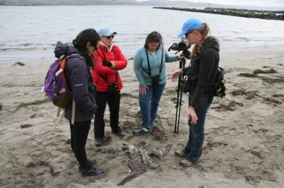 MJS BW25VideoStill-Staff Prepping training Sonoma Coast.JPG