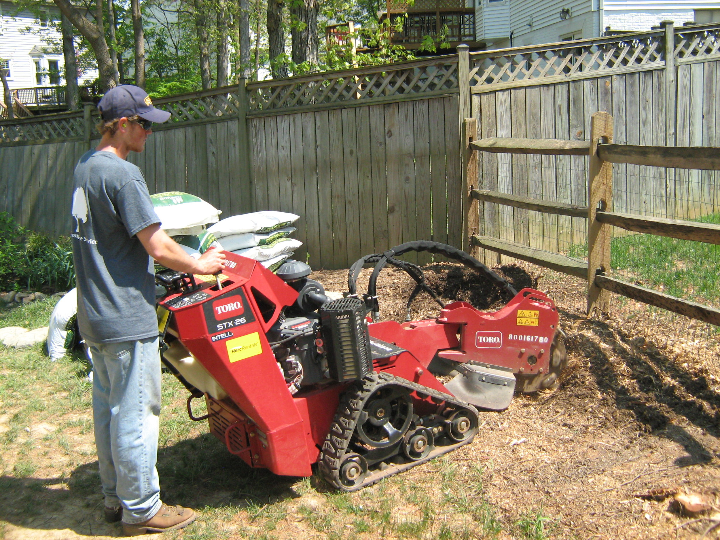 Stump Grinding Picture 1.JPG
