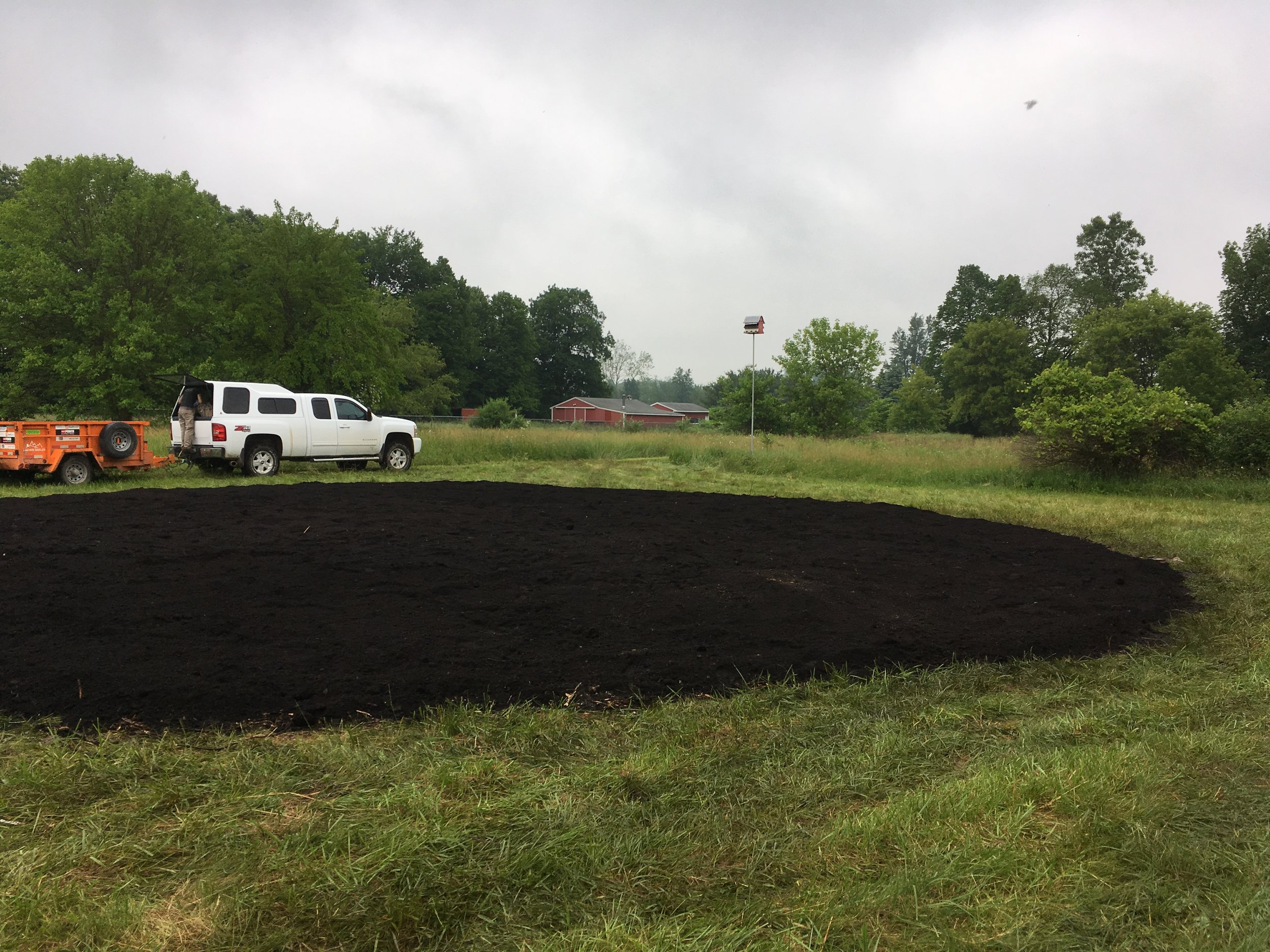 Layer 3 - compost