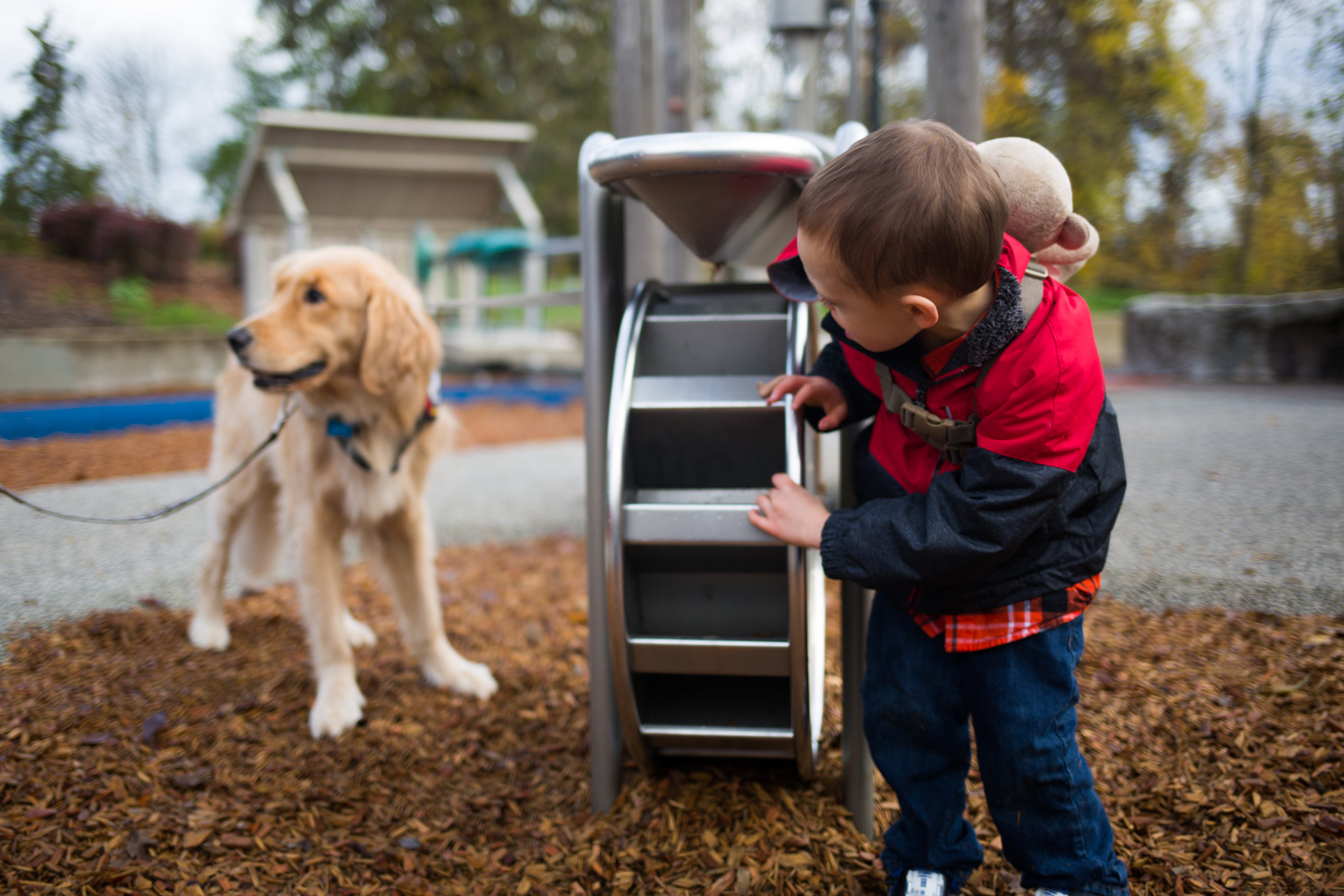 James peaks around a play structure to check on his service dog and friend Dave. The pair stick next to each other wherever they go.