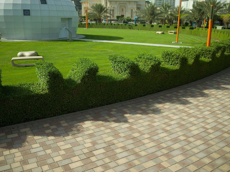 Hedge design by Shahid Ahmad Bashir Mahmood  Al Majaz Park, Sharjah