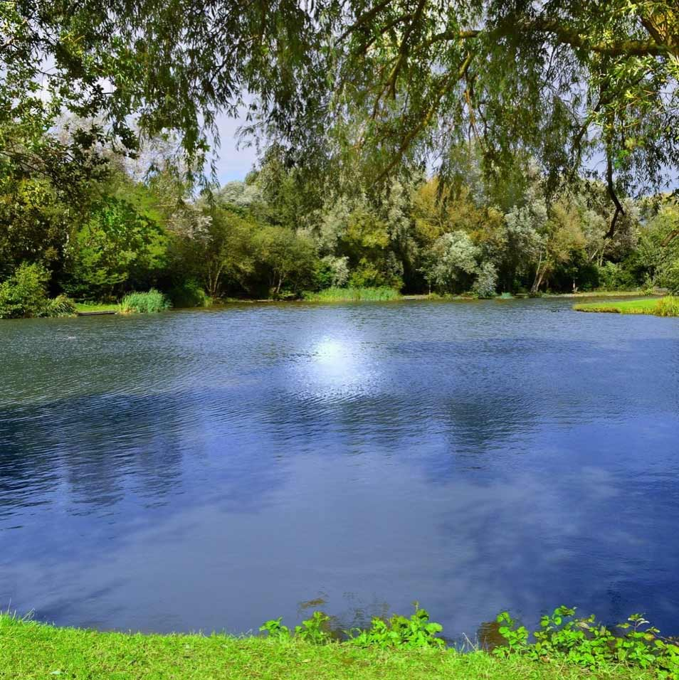 Whole House Drinking Water Systems - Our systems are designed to provide a continuous, whole-house, supply of bacterially safe drinking water from a pond, rainwater cistern, or spring.