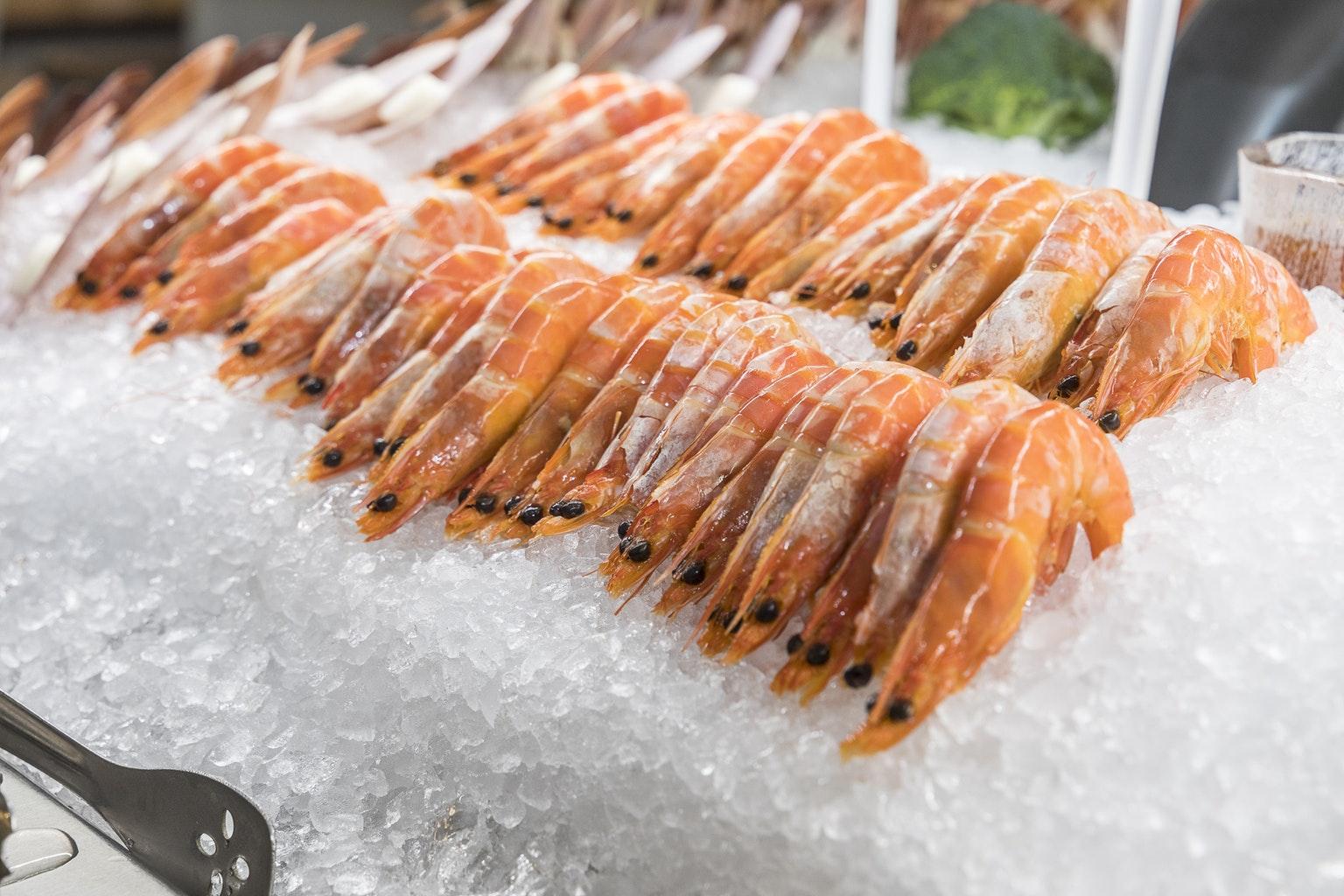 Prawns on ice - seafood buffet