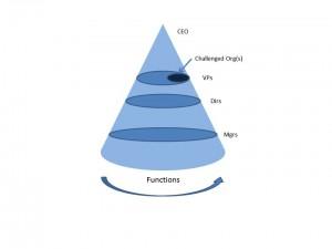 Cone of Management