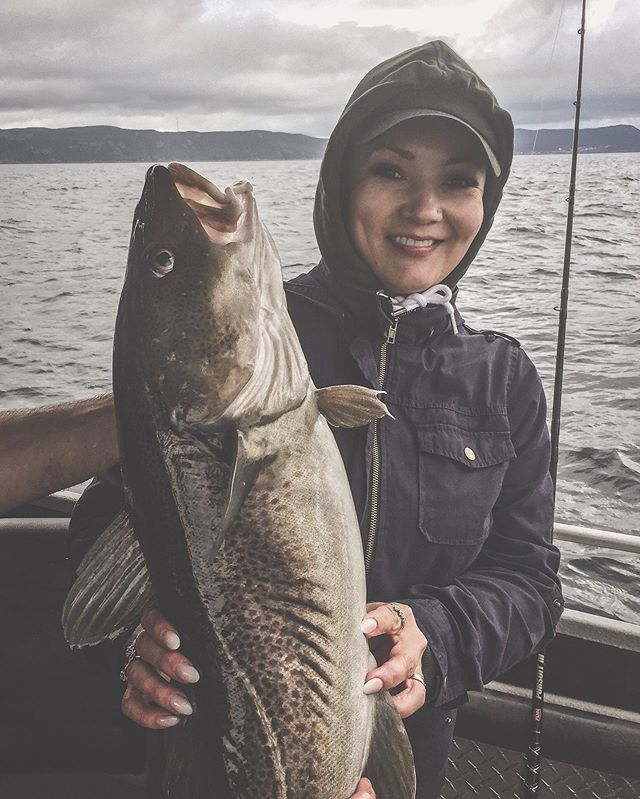 Another Beauty! Awesome charter with our new friends from Grand Prairie.  #saltwaterchartersnl #kingcod #explorenl #tourismnl #newfoundland #portugalcove  #fishinggirl #deepseafishing #jigging #ocean #penn #getoutside