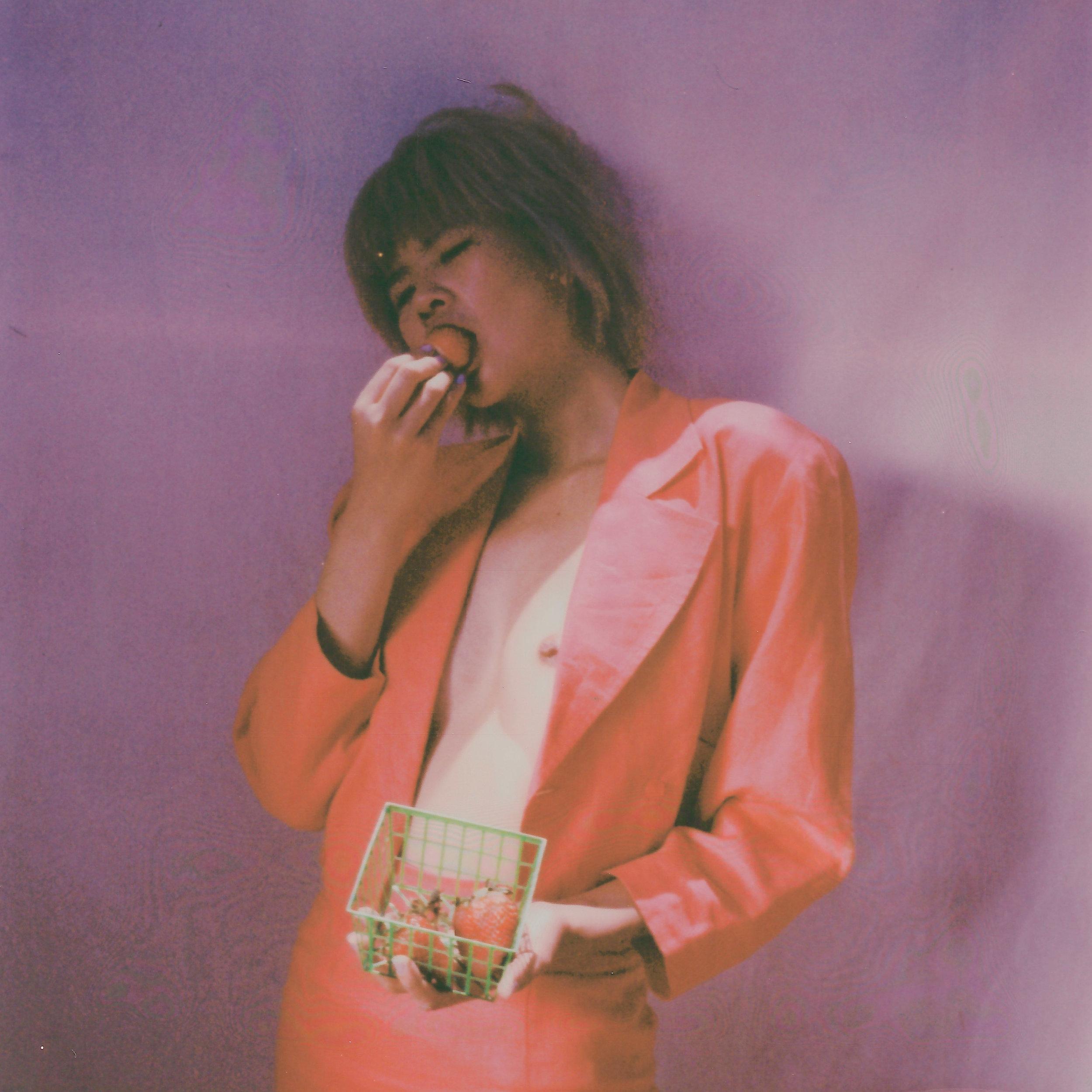 CJU Polaroid sx-70 Vermeer-2.jpg
