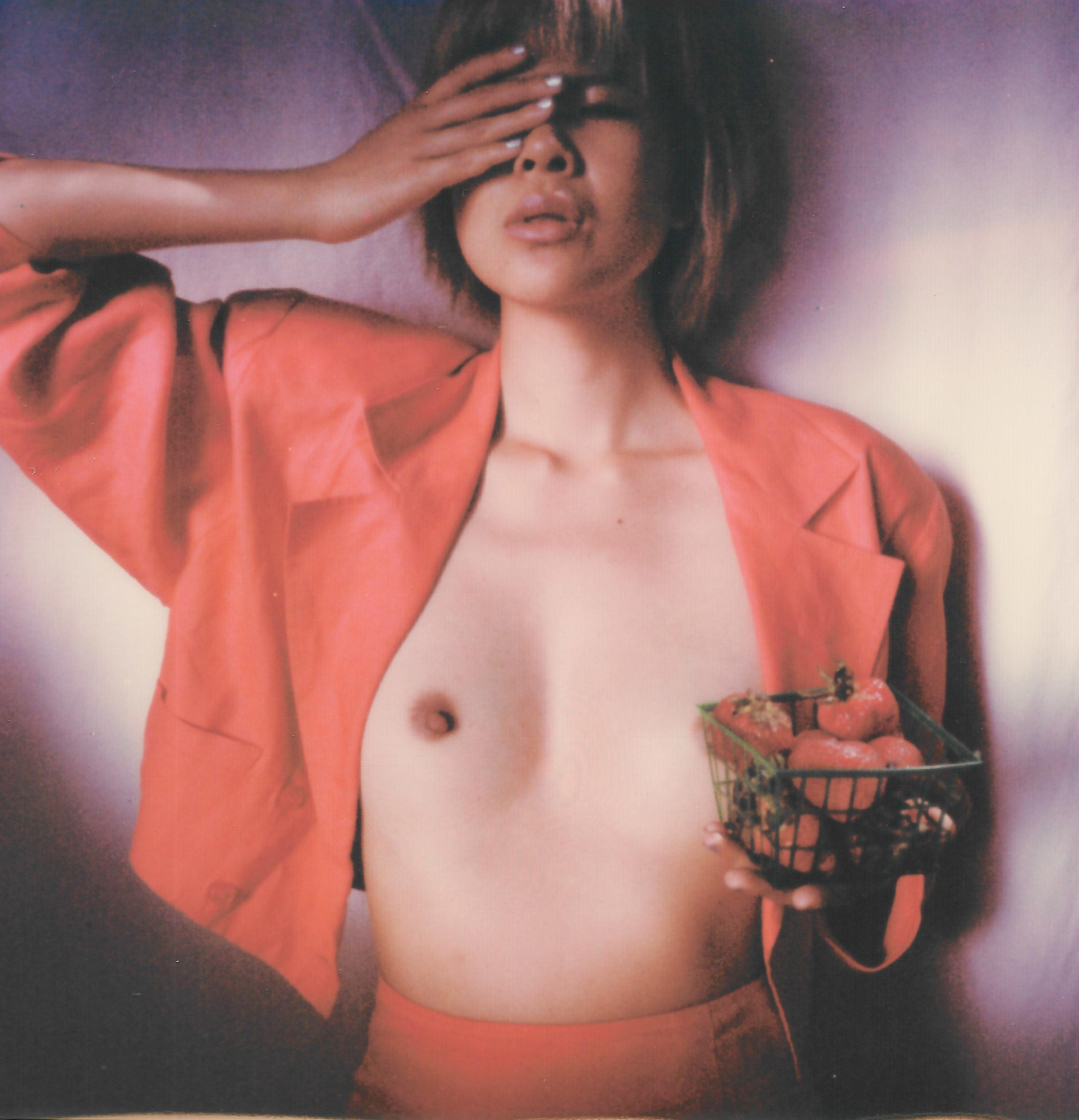 CJU Polaroid sx-70 Vermeer 6-2.jpg
