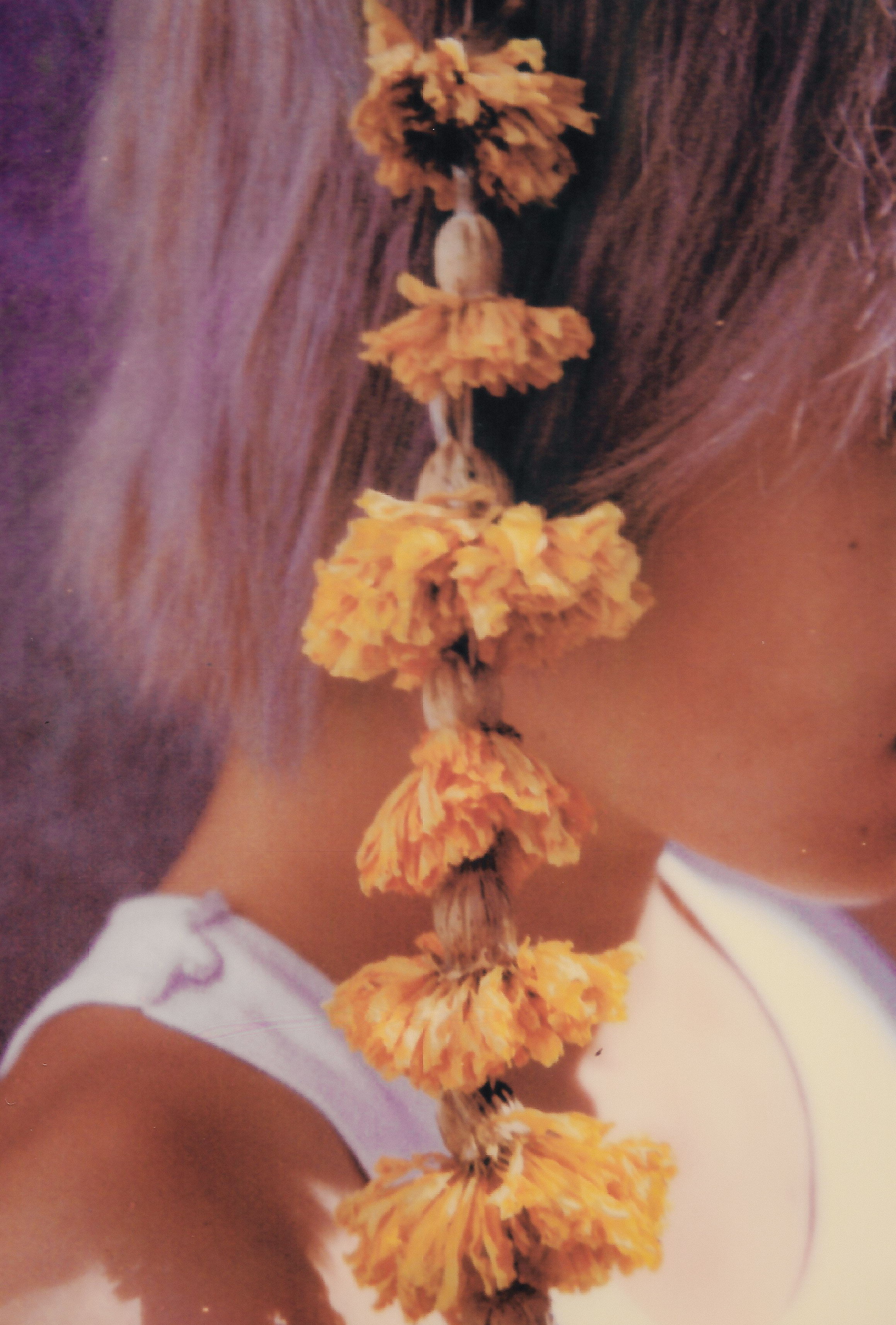 CJU Polaroid sx-70 Vermeer spring.jpg