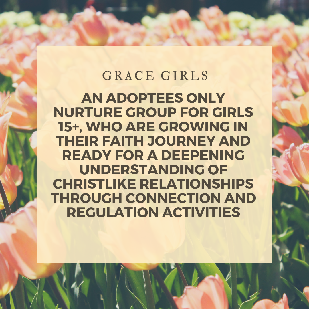 For our next learning series our Grace Girl's will meet on the following dates:  4/9 - Safety (create and recognize safe spaces) 4/23 - Self-Regulation (Coping & Calming Strategies) 5/14 - Strength in Speaking (Giving Voice) 5/28 - Seeking Solutions (navigating problem solving)