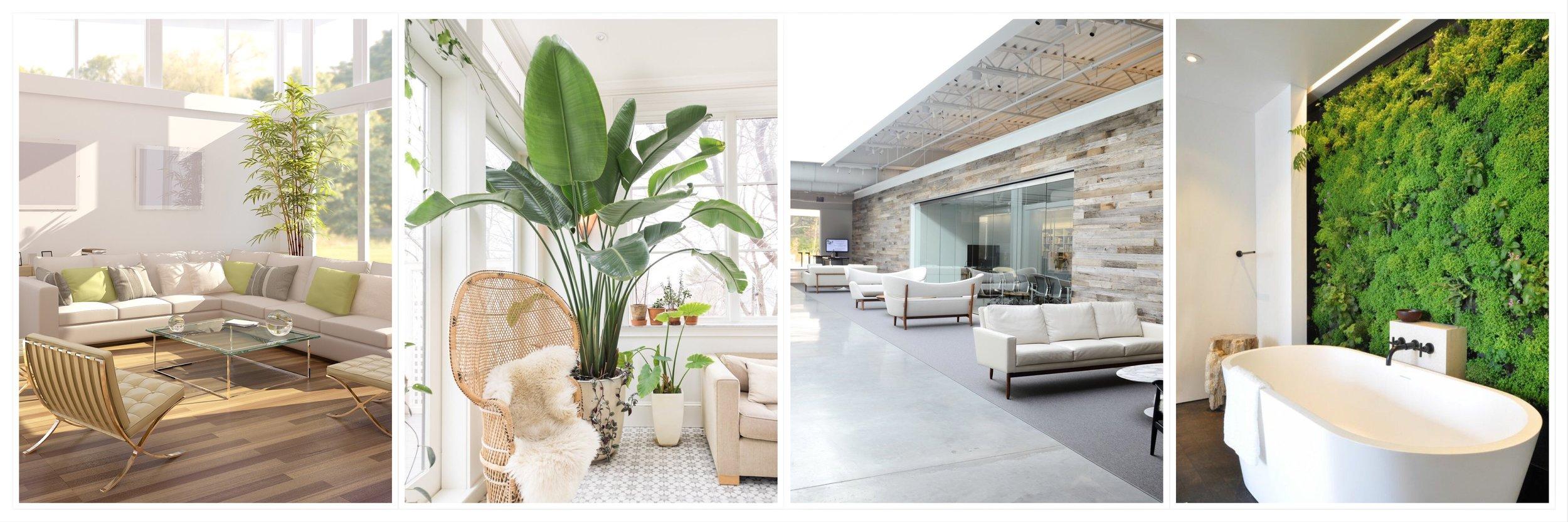 Interior Sustainable Design Panoramic Collage.JPEG