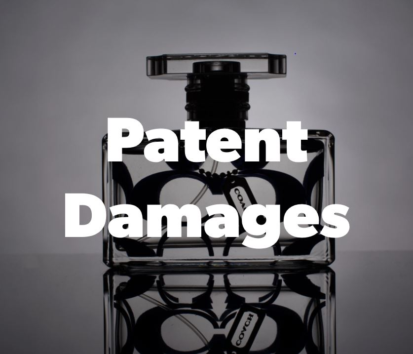 Patent Damages.JPG