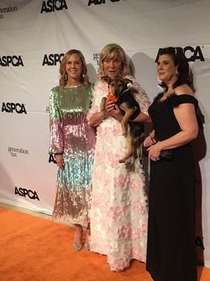 ASPCA 4.jpg