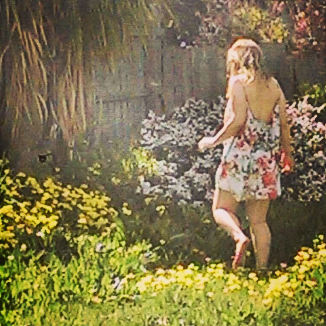 insta backyard foraging.jpg