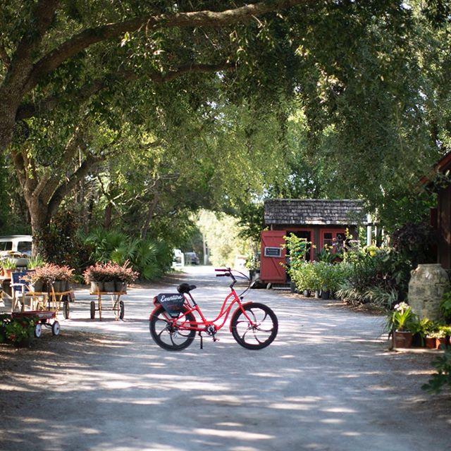 Looking for a unique outdoor experience? Try an Eventure electric bike tour!⠀⠀⠀⠀⠀⠀⠀⠀⠀ #itselectric #biketour⠀⠀⠀⠀⠀⠀⠀⠀⠀ ⠀⠀⠀⠀⠀⠀⠀⠀⠀ ⠀⠀⠀⠀⠀⠀⠀⠀⠀ #adventuretraveler #eventuresowal #floridalife #southwaltontours #vacationlikelocals #exploresouthwalton #visitflorida #adventuretraveler30a