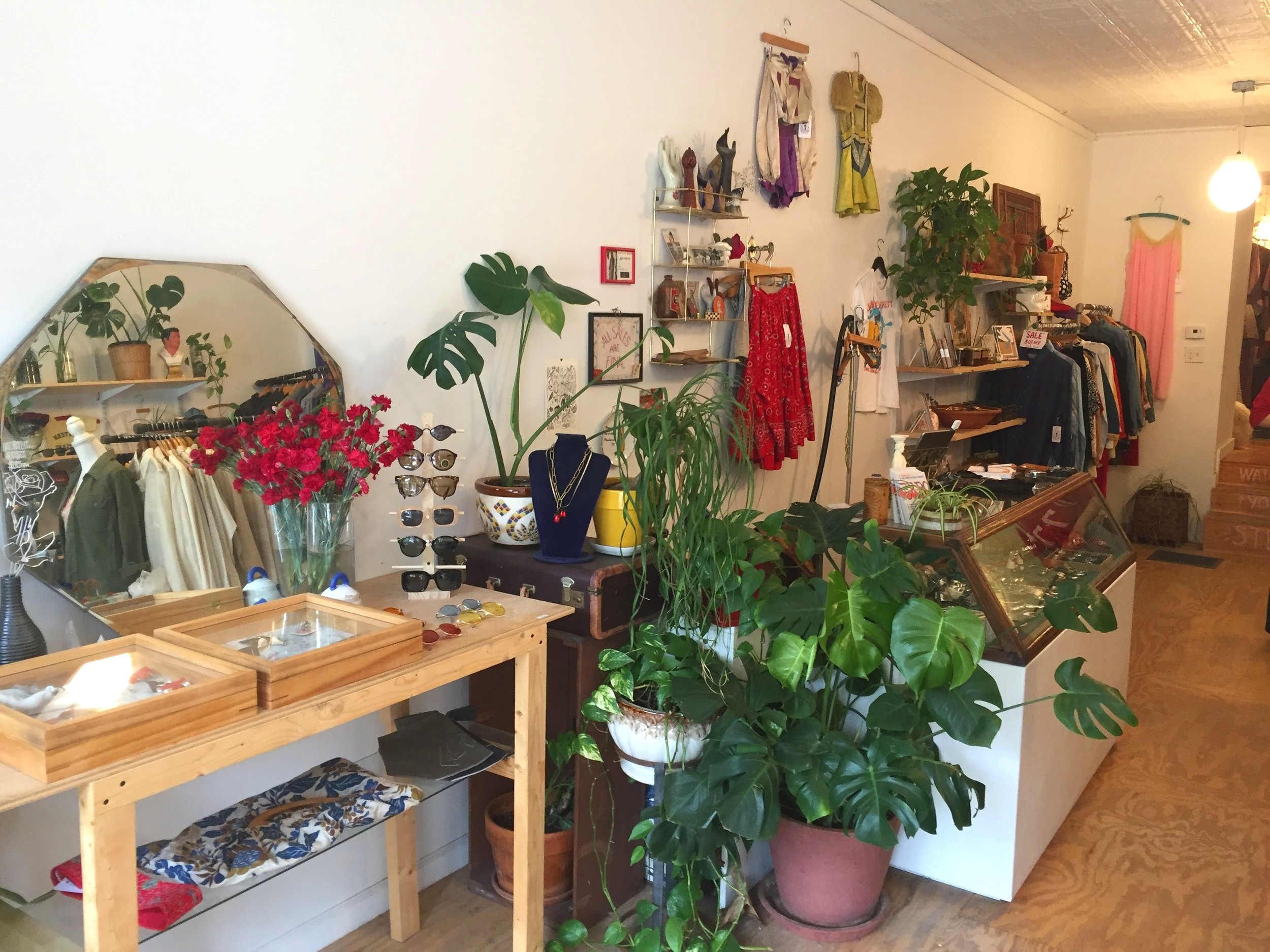 Shop among plants.