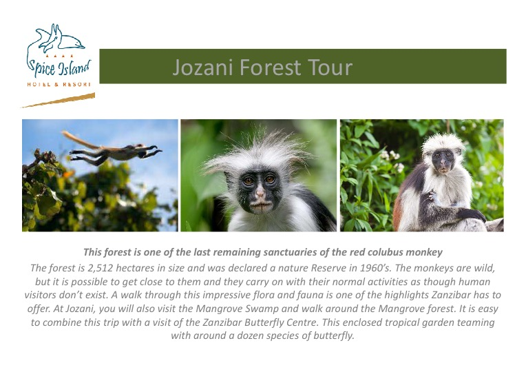 Jozani Forest tour.jpg