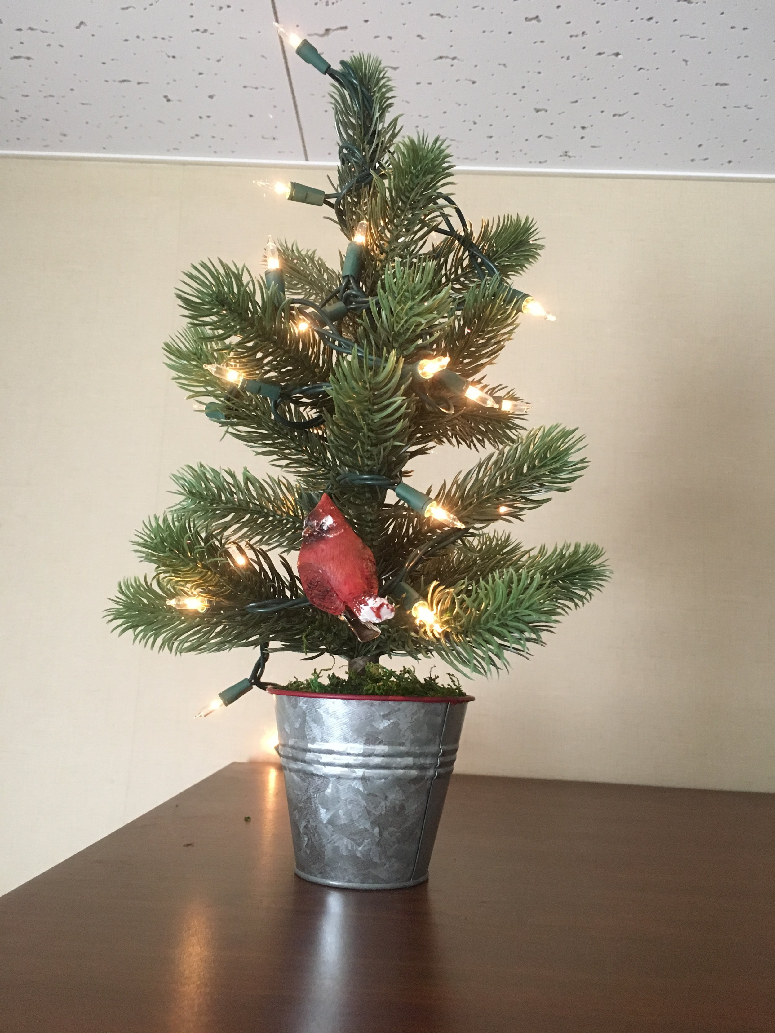 """Our """"cute"""" Christmas tree"""