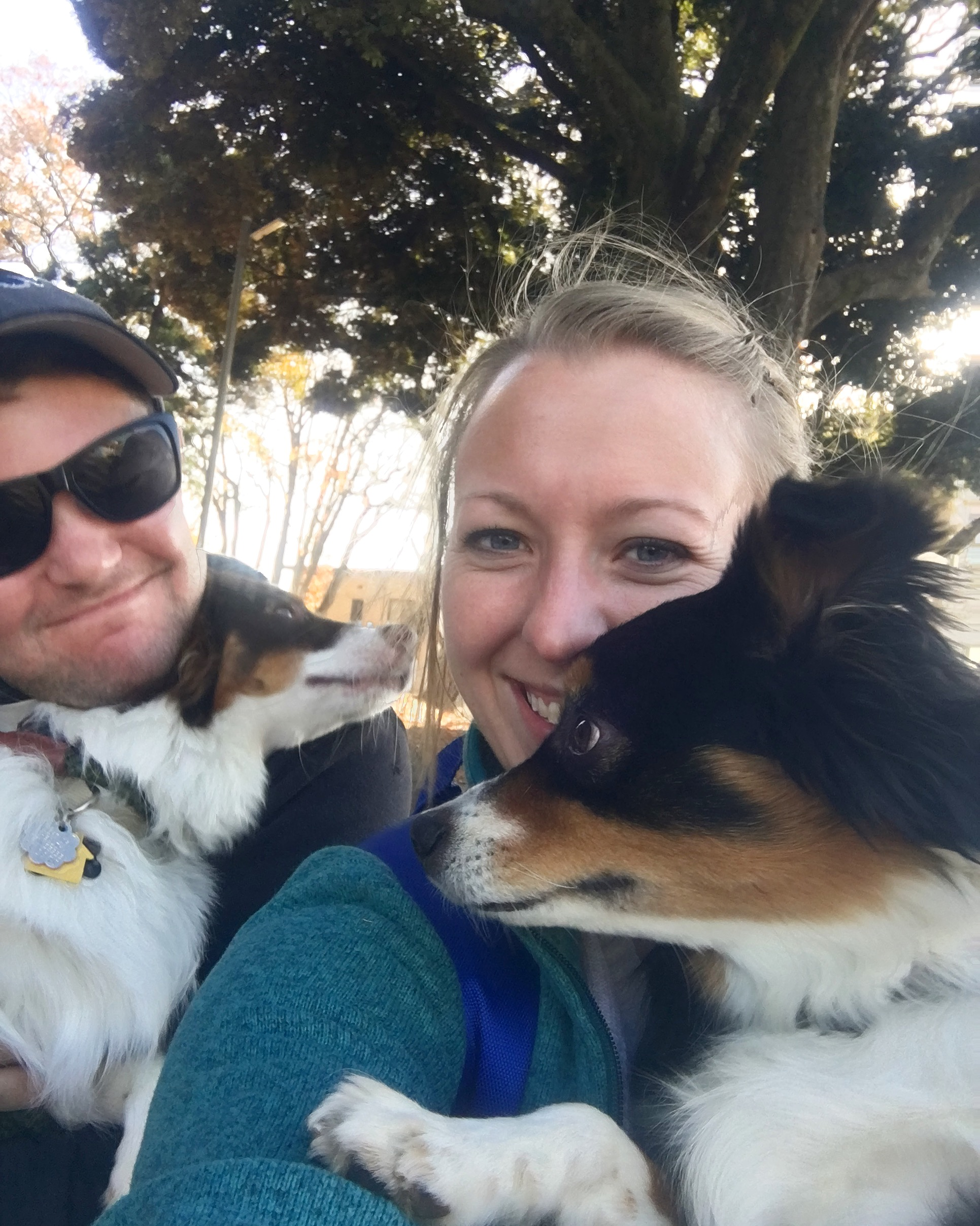 A photo from one of our countless walks as a family (I would walk 10+ miles a day with these guys)