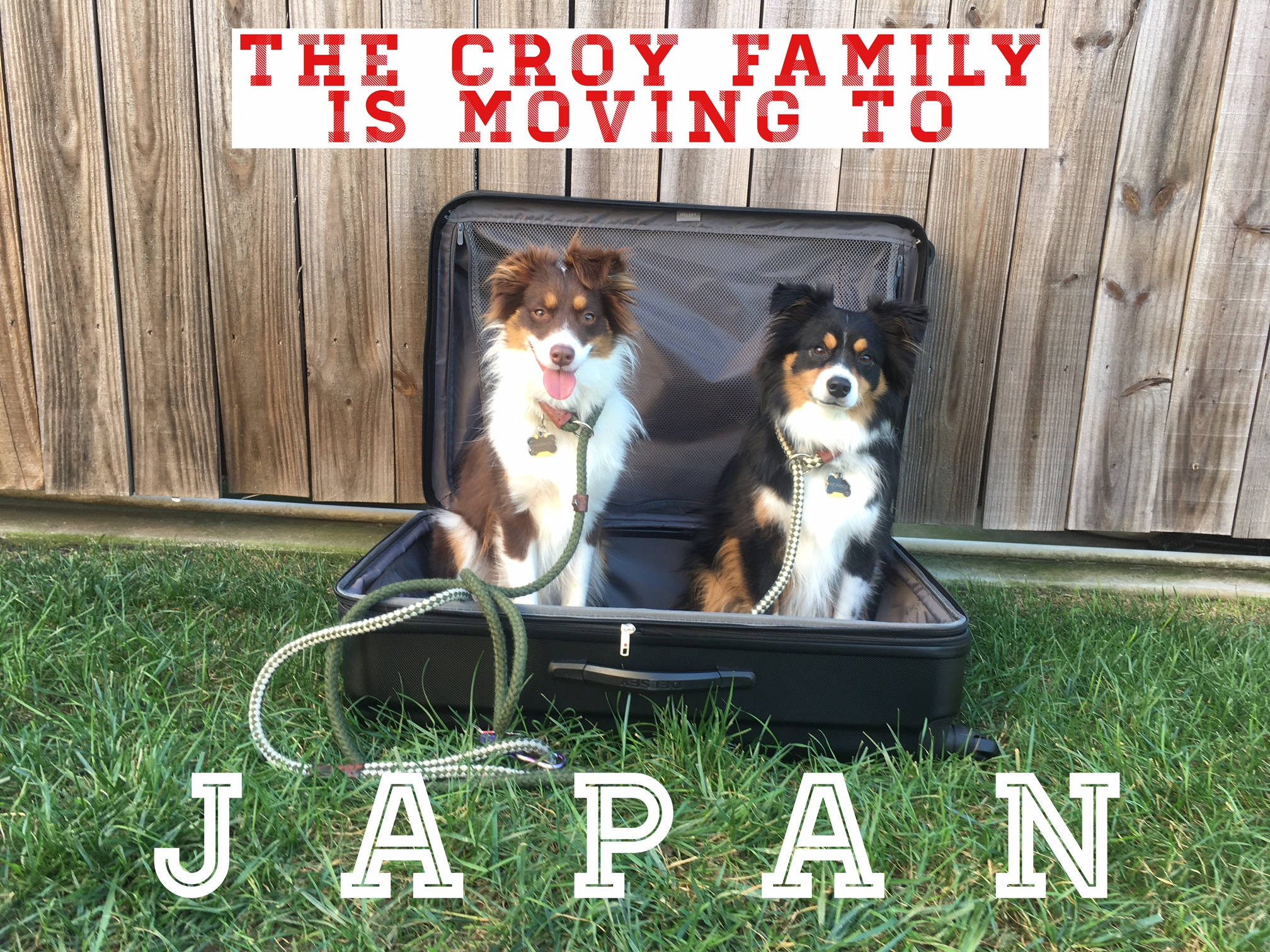 We moved to Japan where it is critical that I meal plan since we only have one car! - Click here to read about how we ended up here!