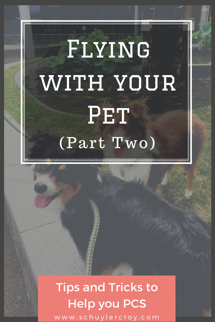 PCS with pets Monroe Tales Schuyler Croy