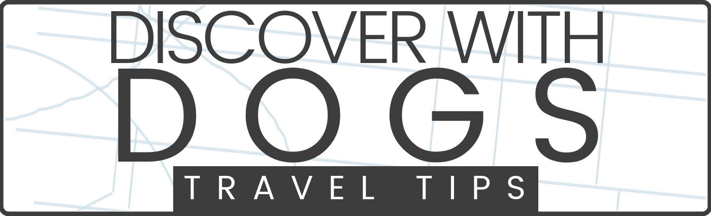 Travel tips for traveling with dogs by Schuyler Croy of Discover with Dogs