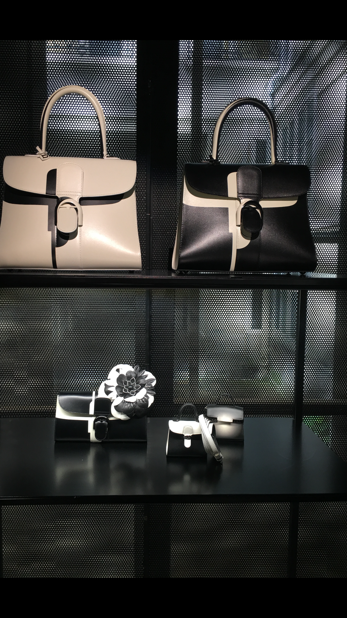 delvaux magasin.PNG
