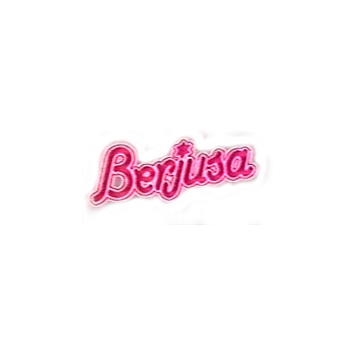 logo_berjusa.png
