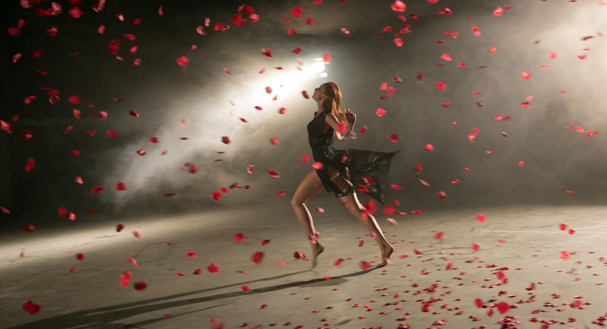 Roses_thumb-6.jpg