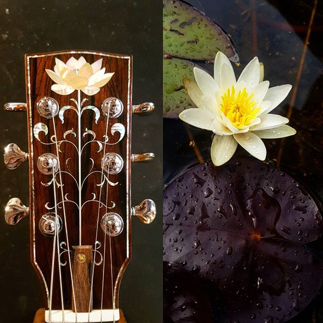 More fun inlay projects coming up in 2018!  Happy new year to you all! #inlay #mrinlay #lotus #waterlily #luthier #luthiery #guitar #stockholm