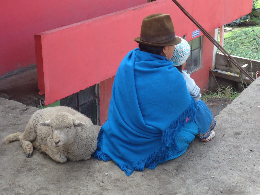 mom-child-pet-lamb-pinchita_26062495680_o-1024x768.jpg