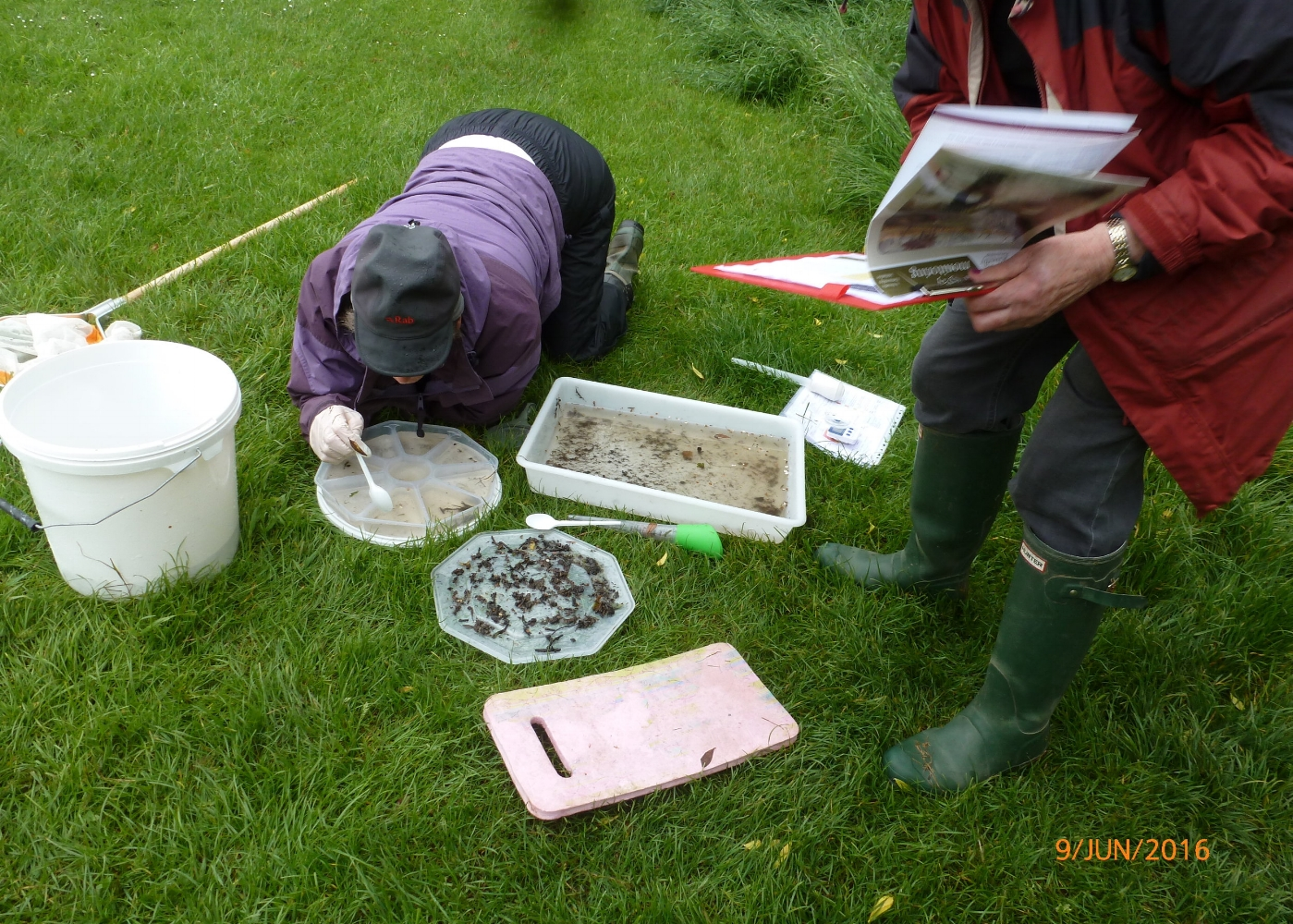 River_Lab_River_Fly_training_at_Bluebell_Beck_June_2016.jpg