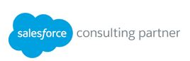 sf consulting partner.JPG
