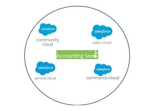 Your strategic plan may call for implementation and integration of your SalesForce platform to include some of its best-in-class applications, such as Community Cloud.This is often a Phase II in our assignments.