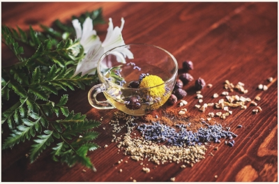 herbs expert.jpg
