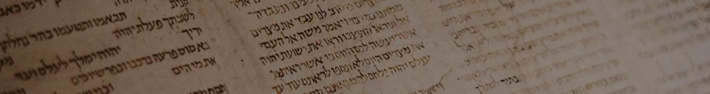 Torah Tidbits -