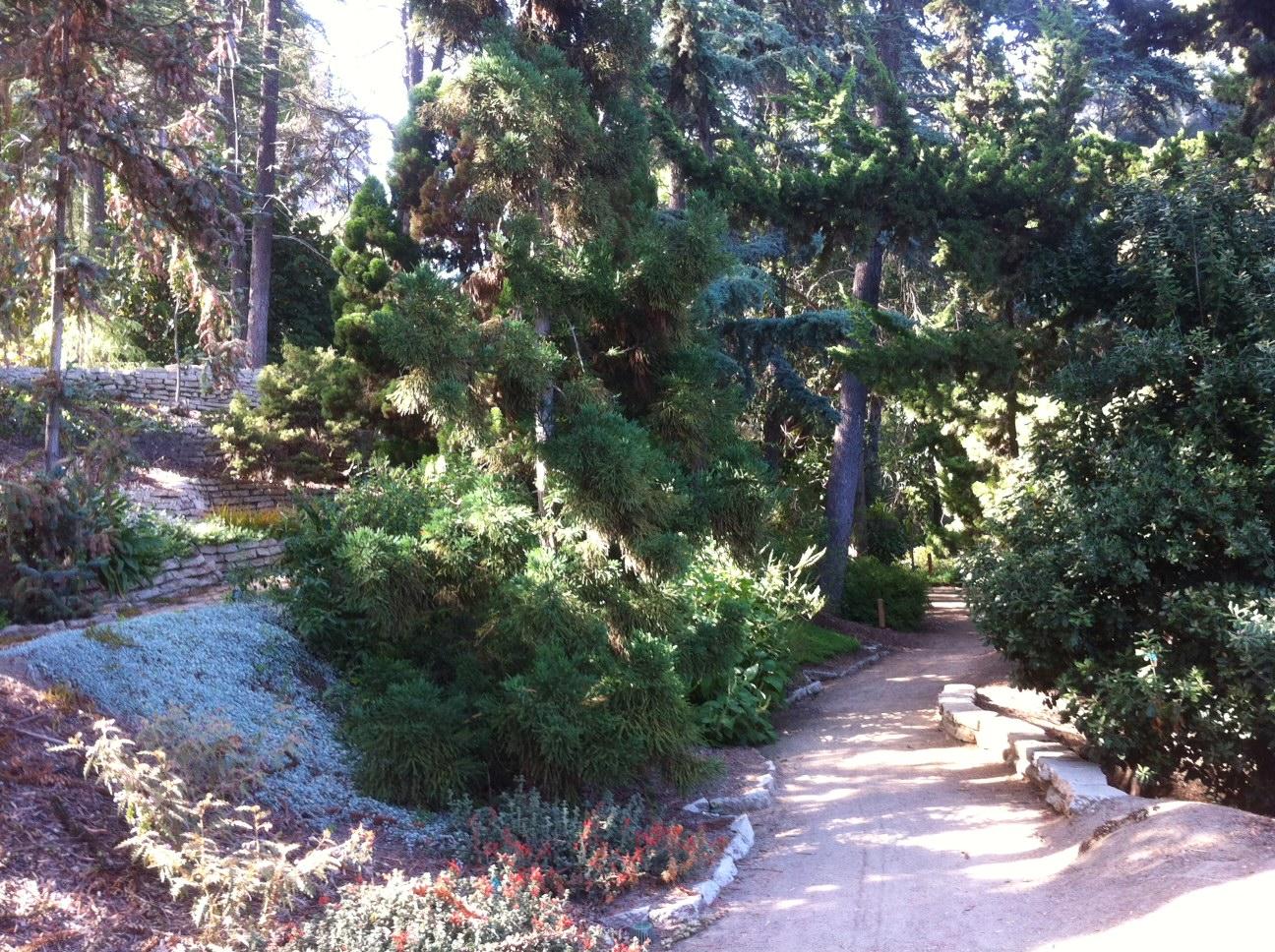 UCLA Mildred E. Mathias Botanical Gardens