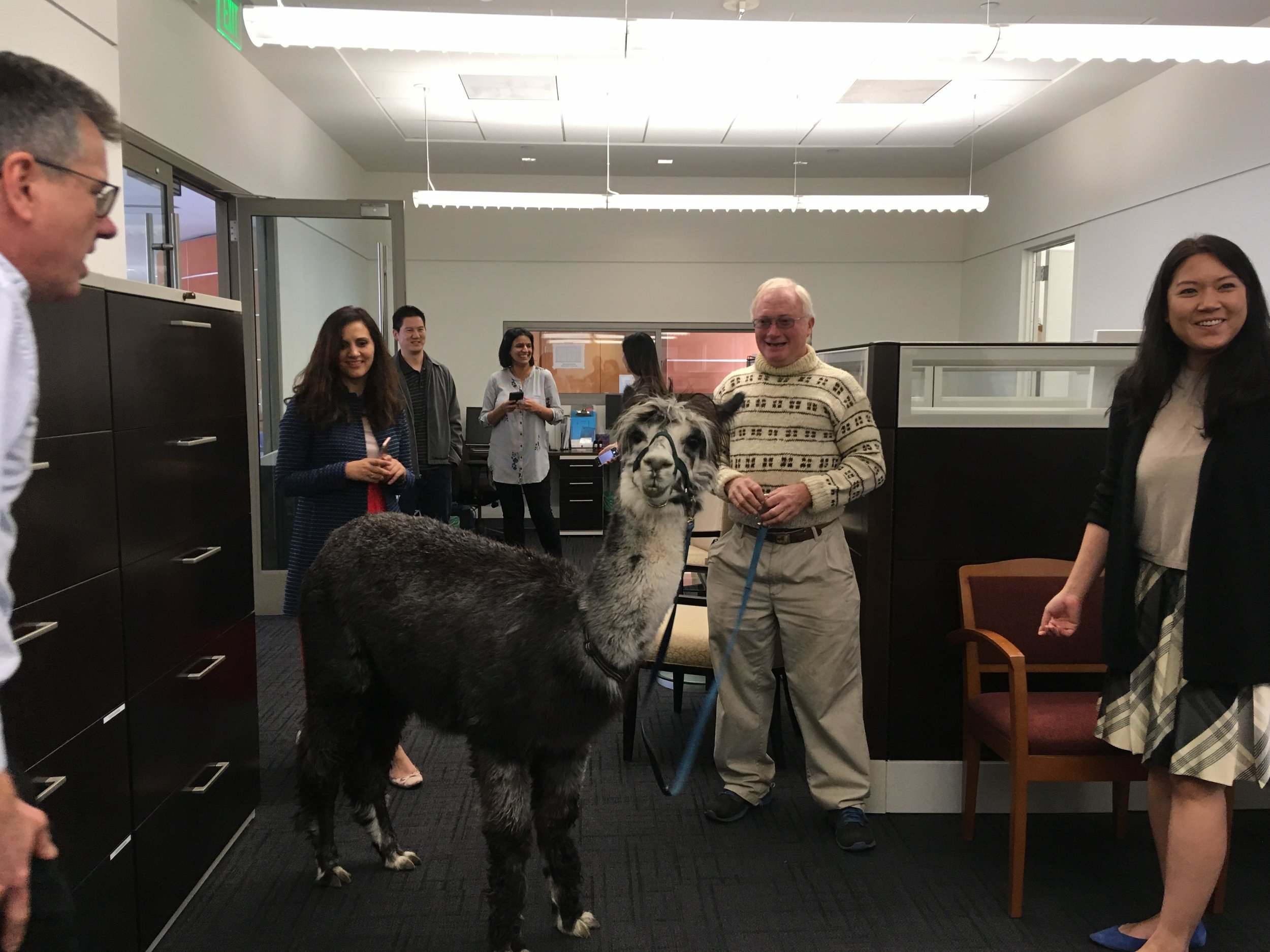March 13, 2018: Alpaca at UCLA CNSI!