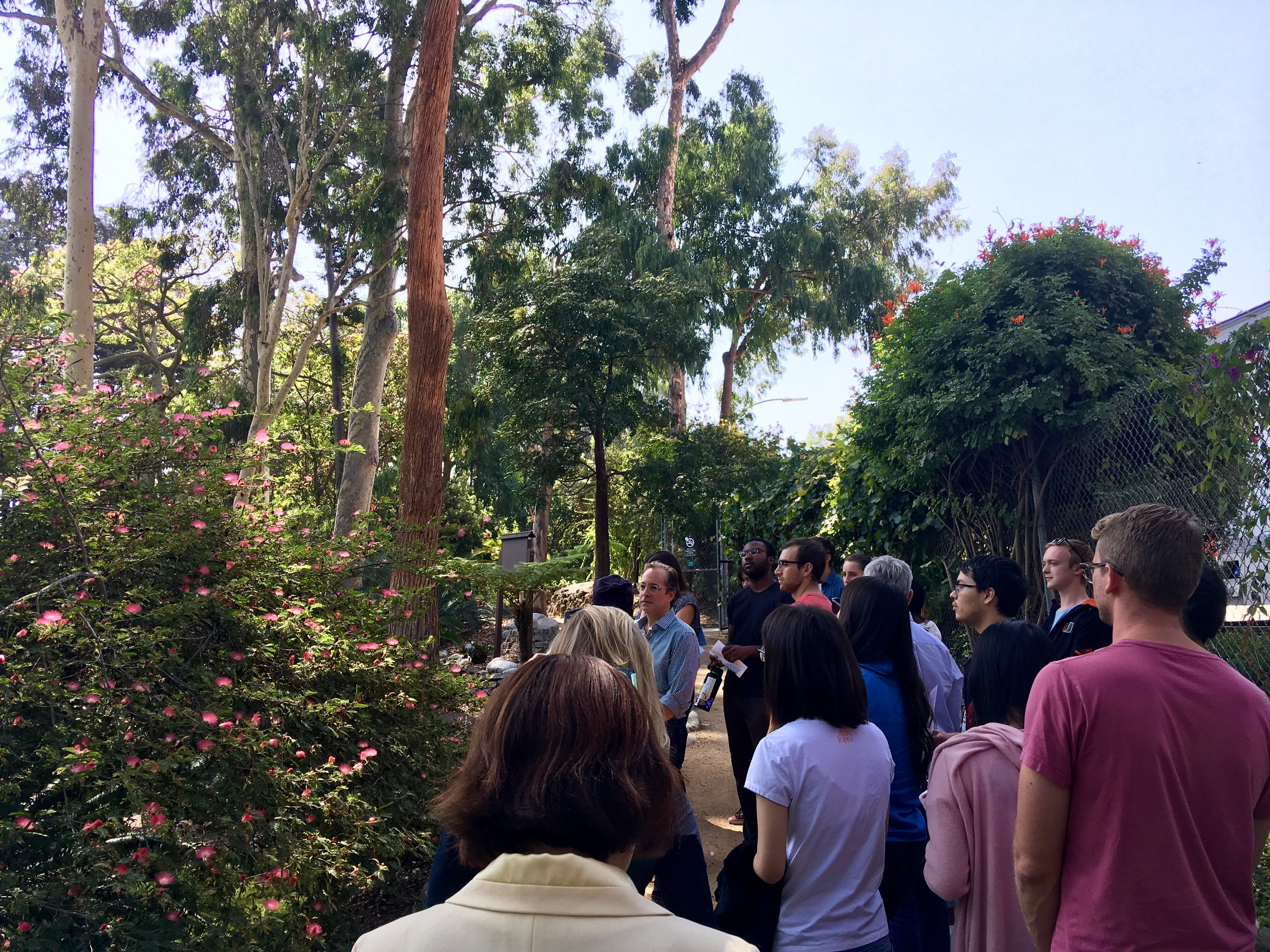 Walk and talk through UCLA Botanical Gardens.