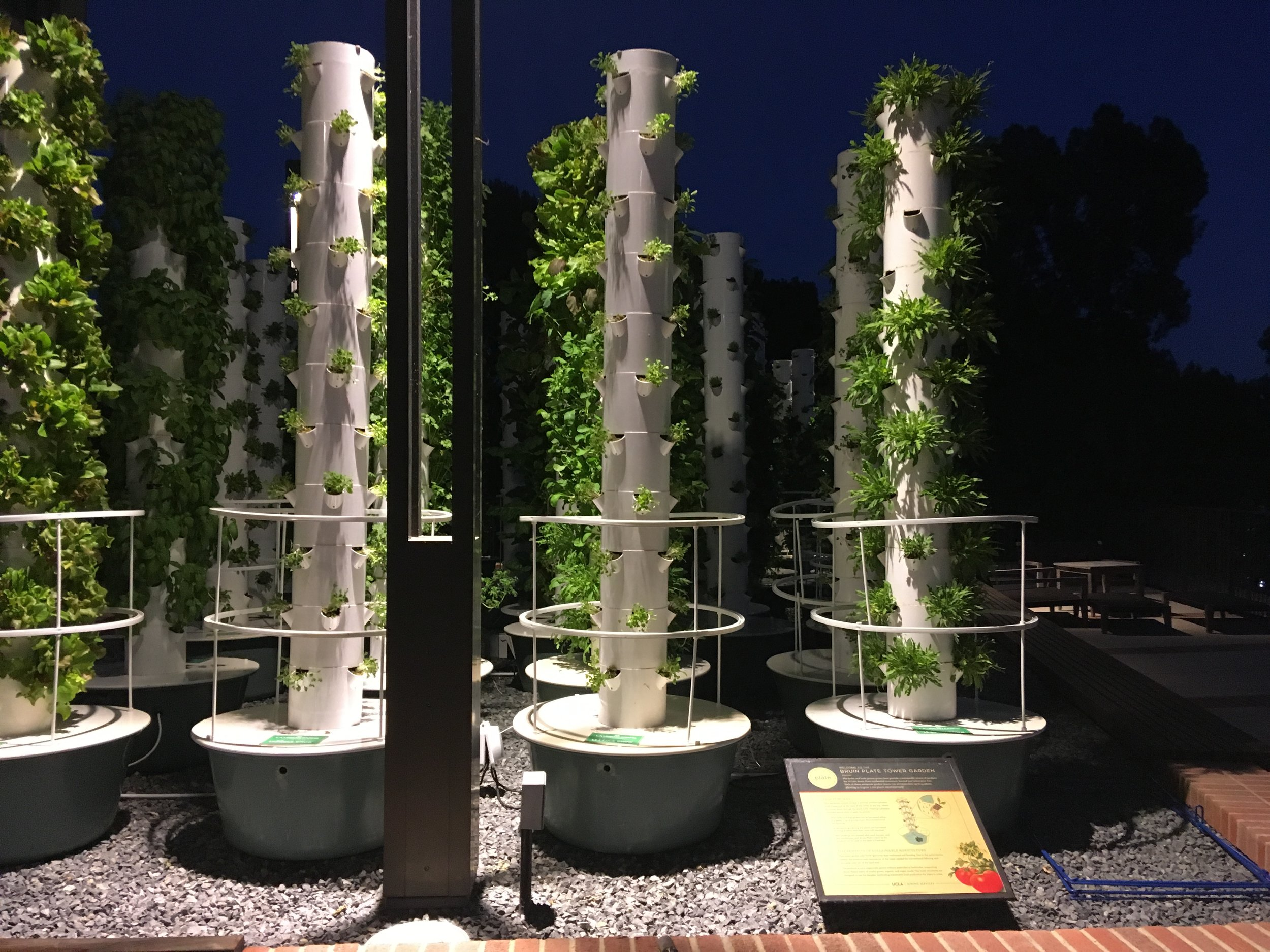 Bruin Plate Tower Garden: Partnership between LA Urban Farms, UCLA Sustainability, and UCLA Dining.