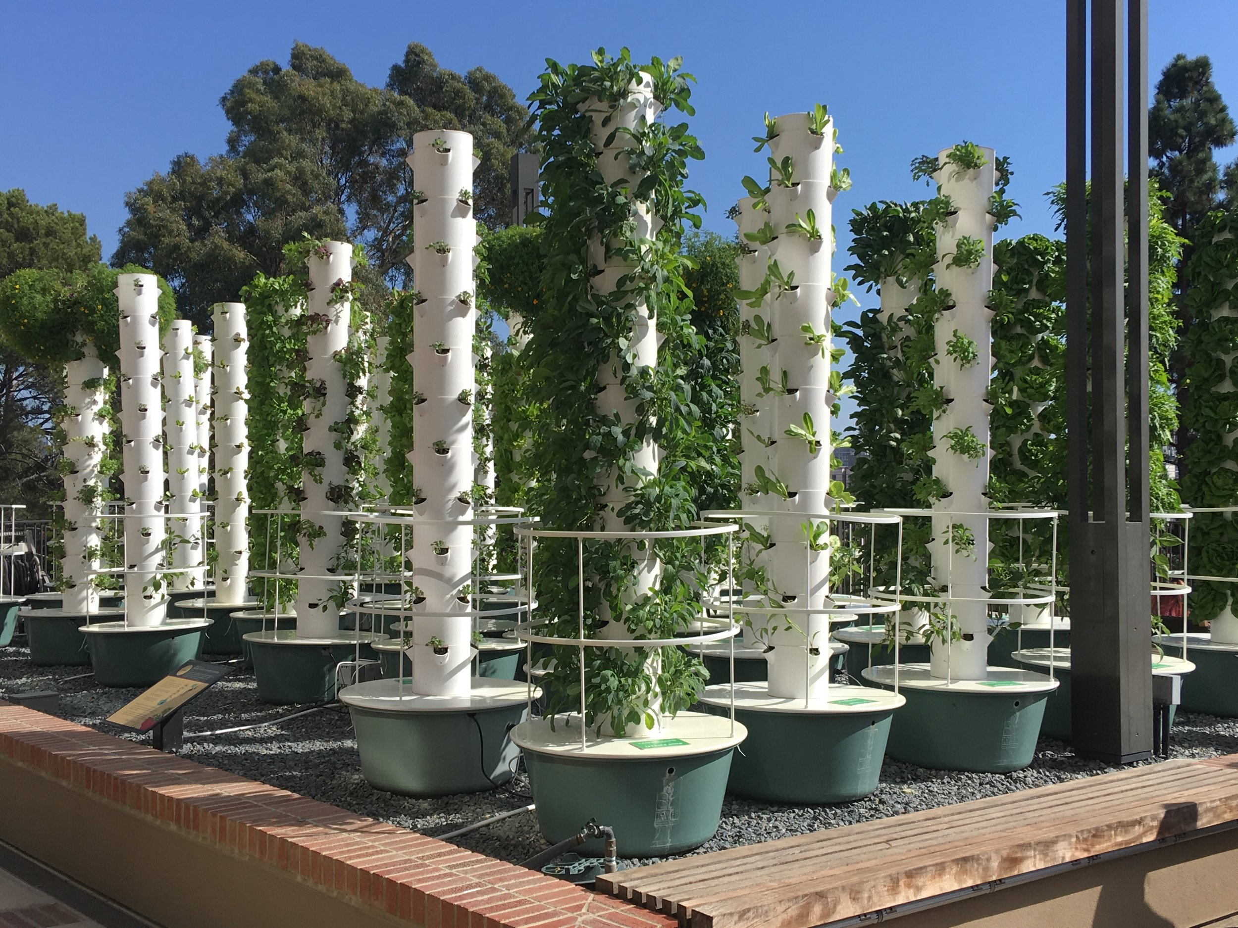 Living Lab - Food, water and energy are critical elements of the fresh food circular economy and urban sustainability. Vertical farming is all about delivering locally grown safe food using the least amount of fresh water, while reducing its energy footprint with innovative technological advances. The INFEWS program in collaboration with Vertical Green Technologies plans to build a vertical farm on campus.
