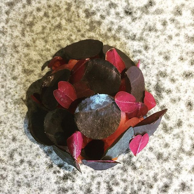 Latest post, about our time @lenclume, now out on Little Left Over (link in bio). #food #foodie #michelinstars #locavore #lamb #beetroot #june #spring #foodwriting #veganism #ethics