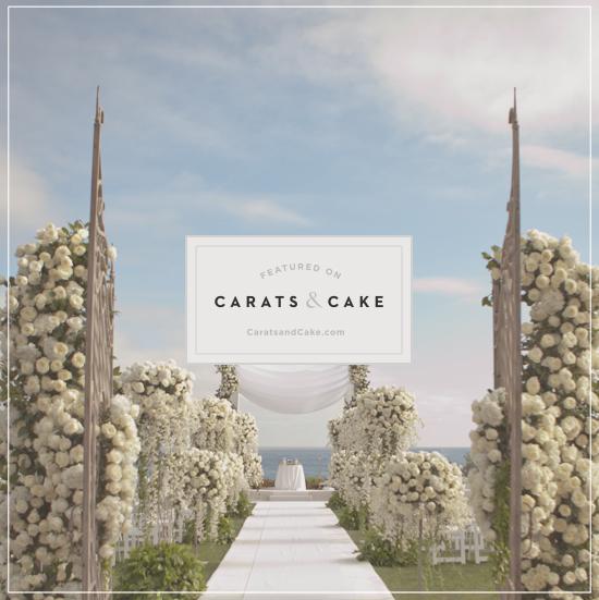 IEC_press_online_CARATS_CAKE_4.jpg
