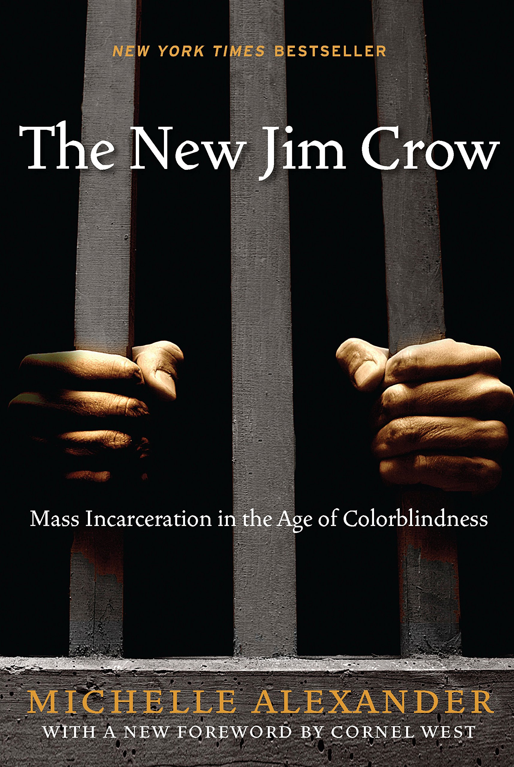 The New Jim Crow: Mass Incarceration in the Age of Colorblindness   (2010)  By Michelle Alexander