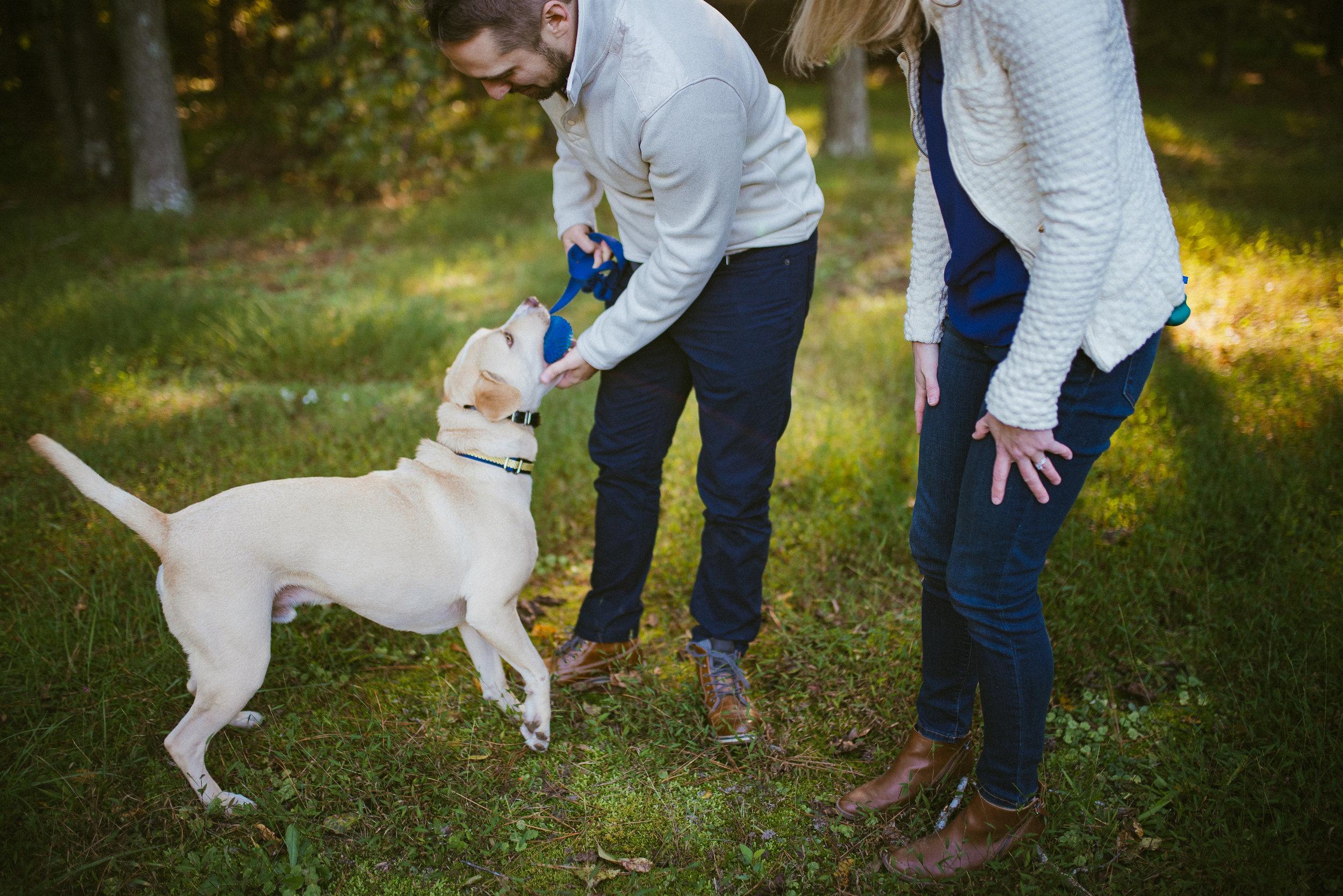 raleigh engagement - pet engagement photographer - raleigh photographer